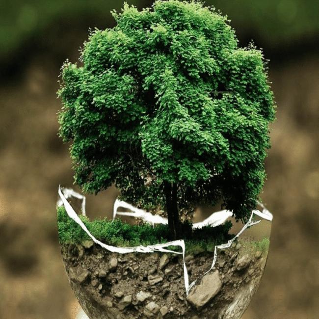 La green logistique, progrès des Supply Chain